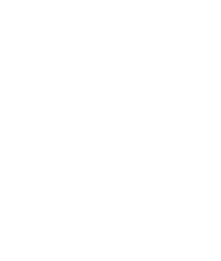 Lyrebird Arts Council Logo